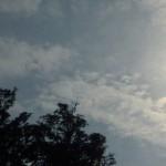 益子の金環日食・写真|2012年5月21日(月)